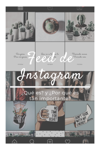 feed de instagram