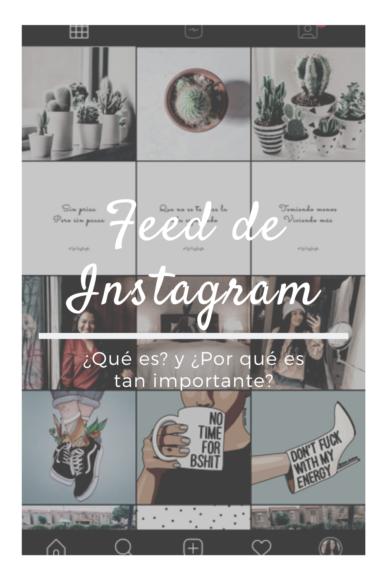 feed de instagram